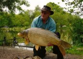 Dave the Bailiff with a MINT common